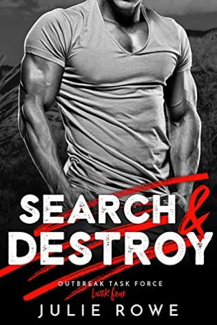 Search and Destry by Julie Rowe